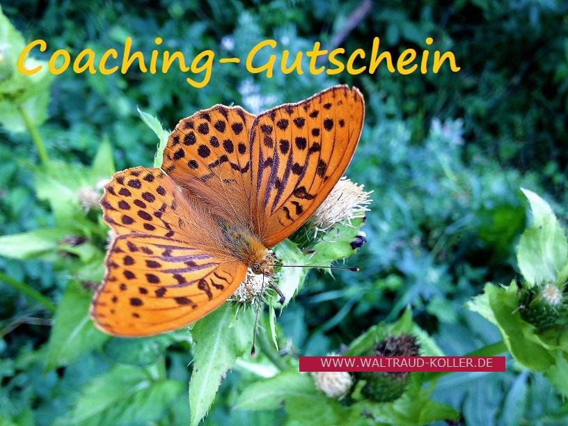 Coaching- Gutschein